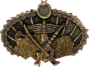 Bordo_Bereliler_logo